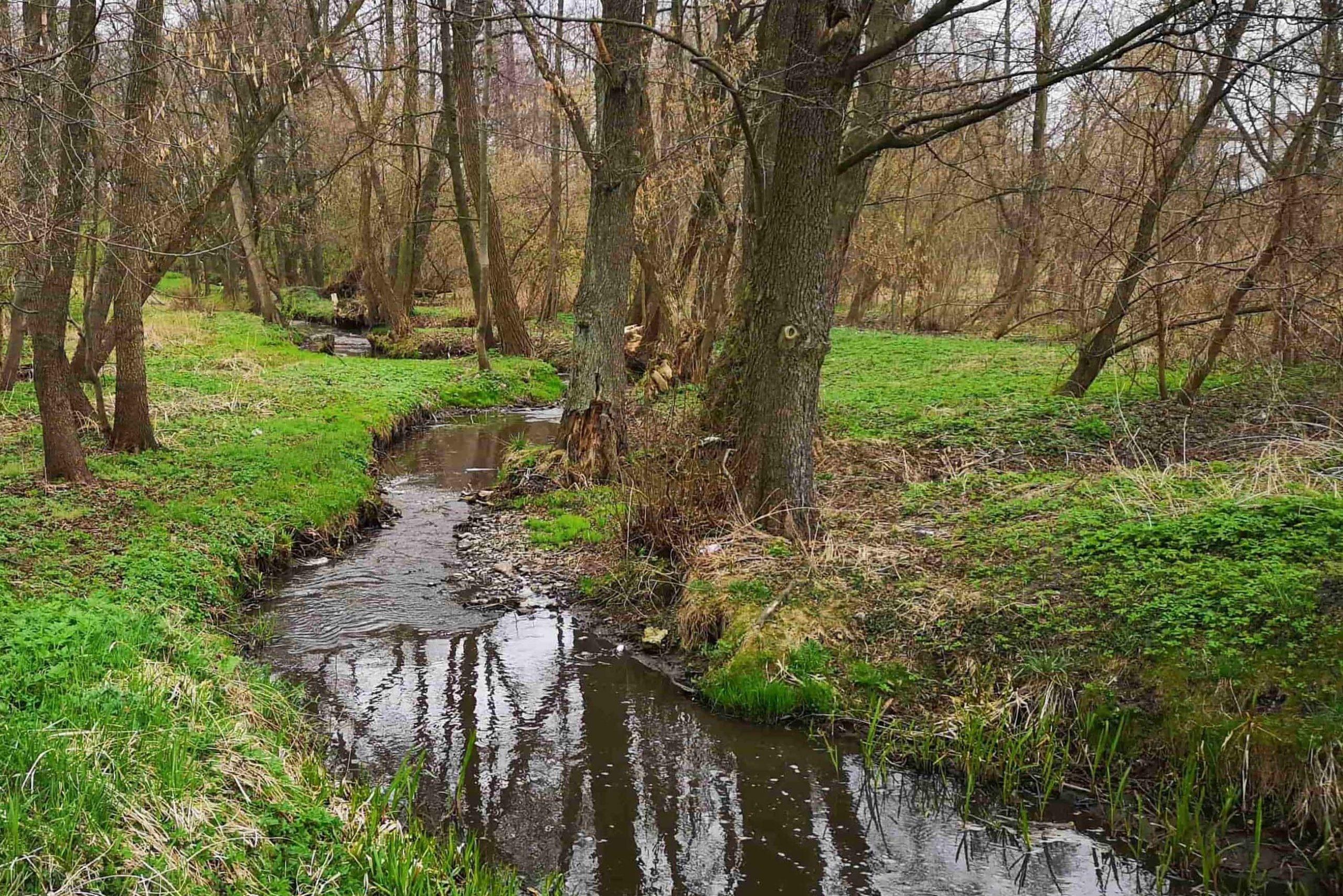 Potok w Kościeliskach - sukiennicy zawsze osiedlali się w pobliżu zbiorników wodnych